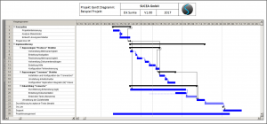 SUCEA Example: Project Plan